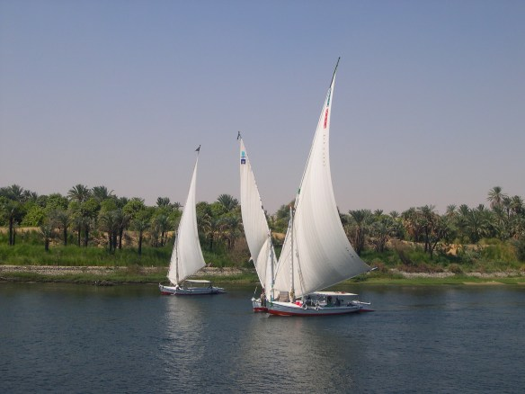 Feluccas, Traditional  Egyptian Sailboad