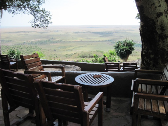 View of the Serengeti